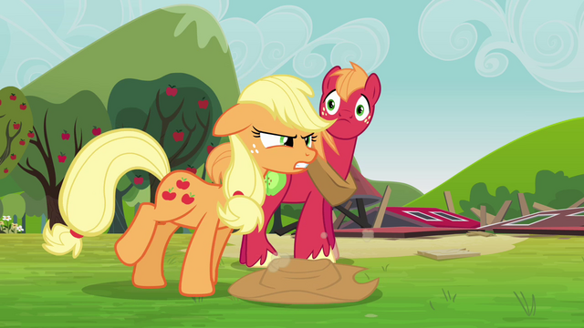 File:Applejack clean up after yourselves S3E03.png