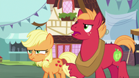"Big Mac ""the most important thing a pony can do"" S6E23"