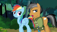 Quibble compromising with Rainbow Dash S6E13