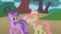 Amethyst Star and Gala Appleby walk past Fluttershy S1E7.png