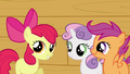 Apple Bloom 'show you just some of the highlights' S3E04.png