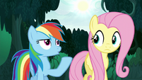 Rainbow Dash pointing to the sun S6E11
