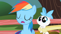 Rainbow Dash Pass S2E7
