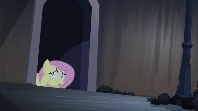 File:Fluttershy hiding S04E03.png