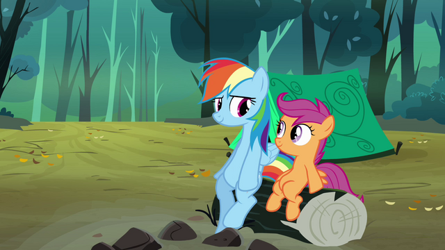 File:Rainbow Dash and Scootaloo sitting on log S3E6.png