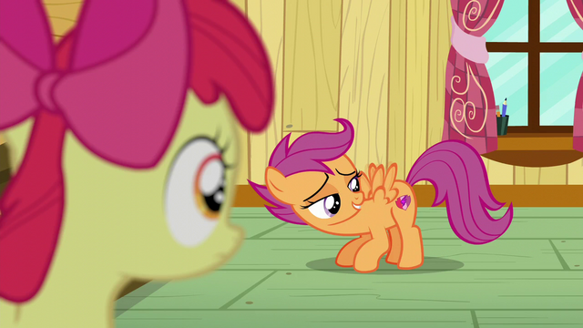 File:Scootaloo staring at her cutie mark while flapping her wings S6E4.png