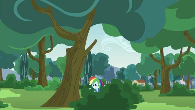 File:Rainbow Dash in a bush EG3.png