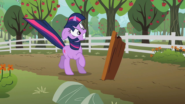 File:Twilight Sparkle Near Miss S2E3.png