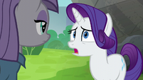 "Rarity ""she was willing to give up"" S6E3"