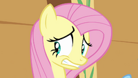 Fluttershy oh boy S2E22.png
