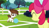 Pipsqueak about to hit the ball S4E15