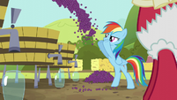 Rainbow Dash tossing grapes S5E17