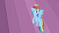 Rainbow hears Celestia S6E2