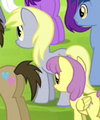 Derpy Hooves Earth pony ID S4E22.png