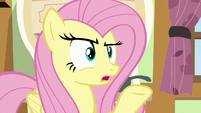 "Fluttershy ""I don't think they meant here"" S6E11"