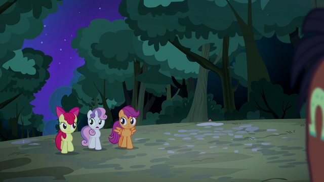 "File:Sweetie Belle ""sweet of him to help us out"" S5E6.png"