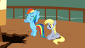 Derpy Hooves Sitting 3 S2E14.png