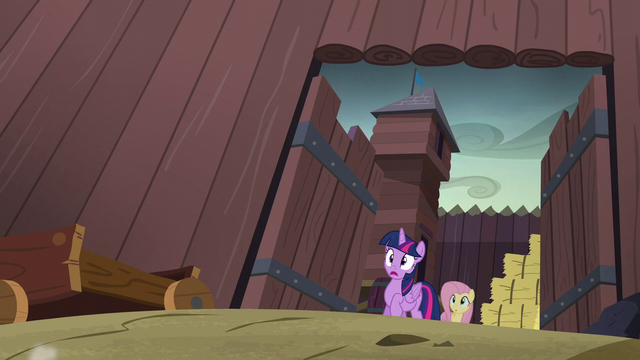 File:Twilight and Fluttershy in complete shock S5E23.png