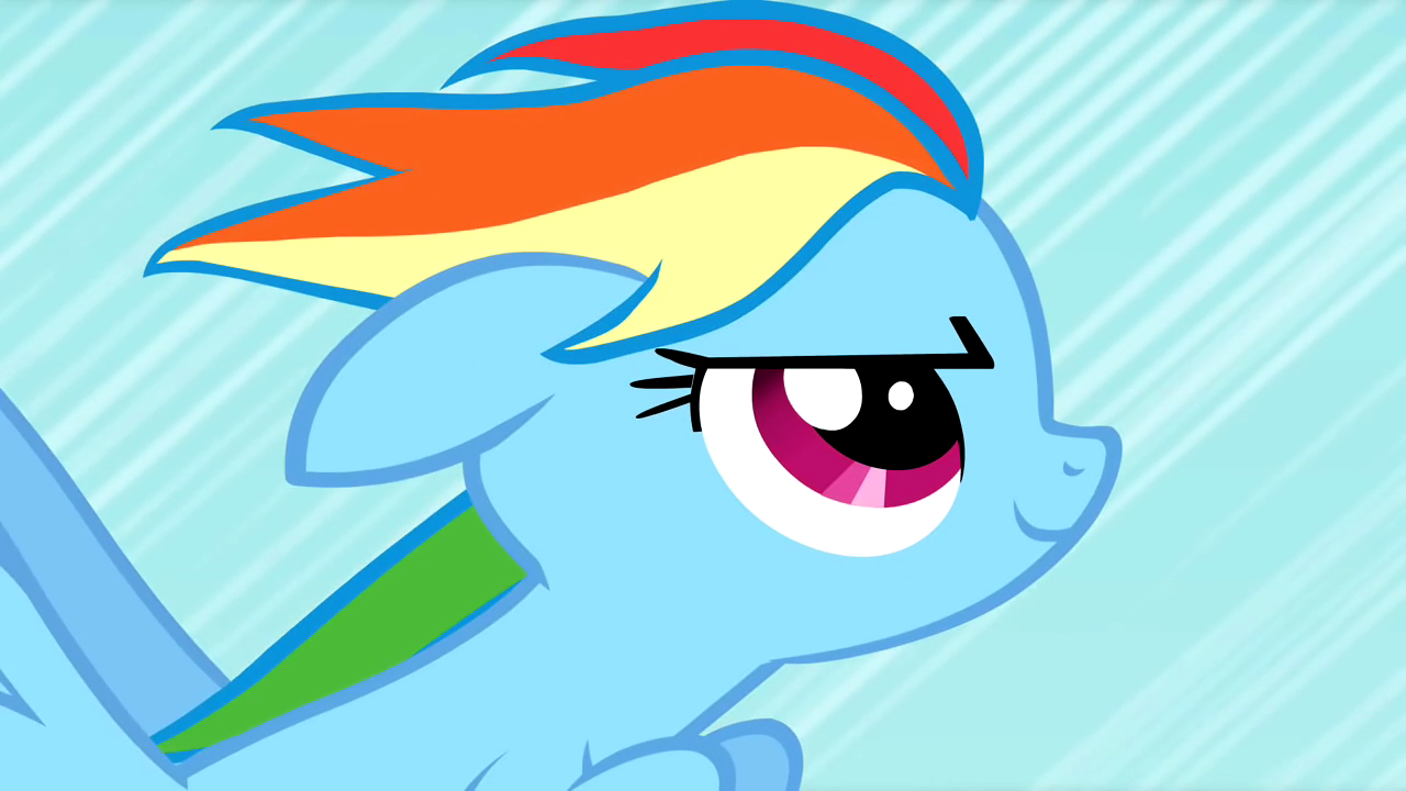 My Little Pony Rainbow Dash Rapid Rainboom   StarSueNet