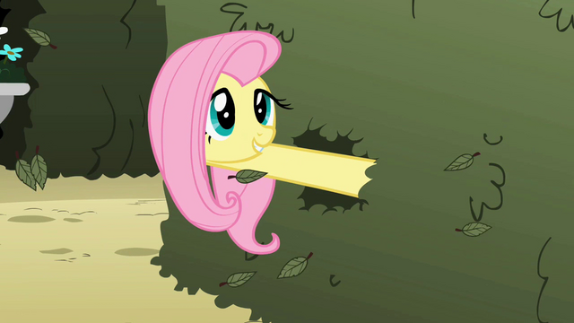 File:Butterflies pique Fluttershy's interest S2E01.png