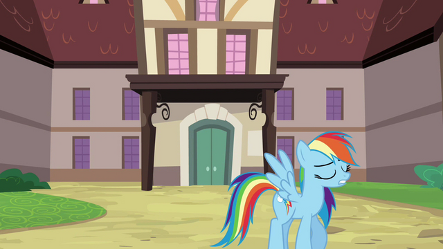 File:Rainbow Dash Pondering 1 S2E16.png