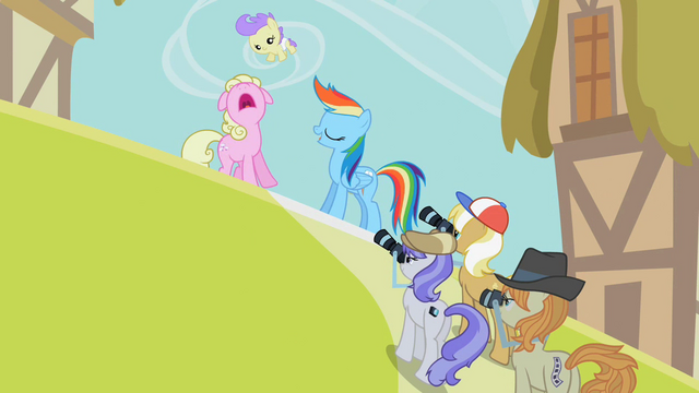 File:Rainbow Dash posing for photos S2E08.png