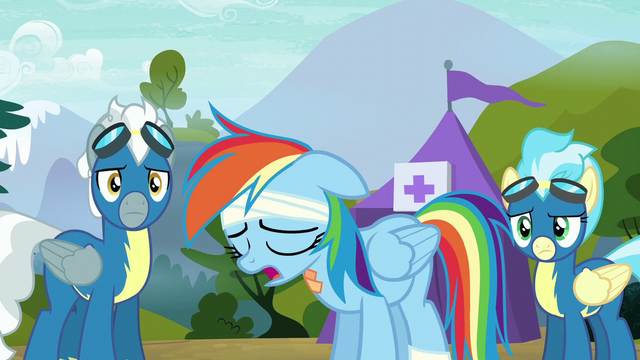 "File:Rainbow Dash ""not Wonderbolt material after all"" S6E7.png"