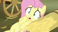 "Fluttershy timid ""I don't know"" S5E21"
