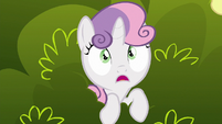 """Sweetie Belle """"is that really a griffon?"""" S6E19"""