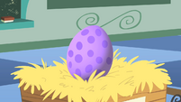 Spike egg close-up S1E23