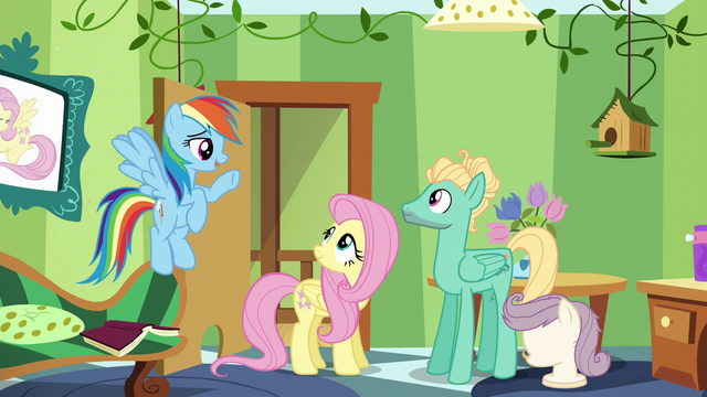 "File:Rainbow ""now that you've accomplished this"" S6E11.png"