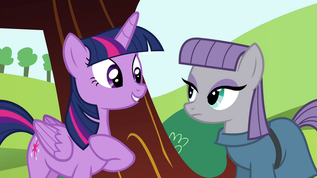 File:Twilight introducing herself to Maud S4E18.png