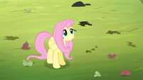 Fluttershy looking up at the bats S4E7
