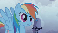 Rainbow Dash puzzled S1E02