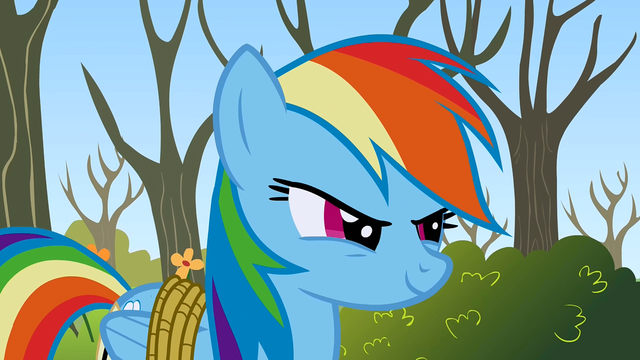 File:Rainbow Dash Two can play S1E13.png