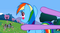 Rainbow Dash eyes S02E03