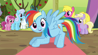 Rainbow Dash standing up again S5E17