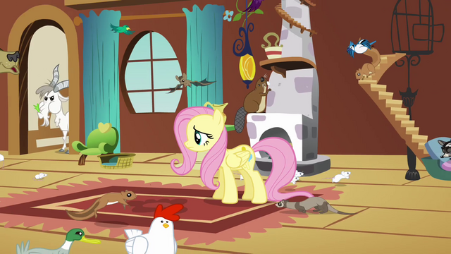 File:Fluttershy addresses the animals S03E13.png