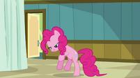 "Pinkie Pie ""but a big orange"" S2E16"