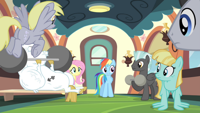 File:Rainbow Dash addresses the teams S4E24.png