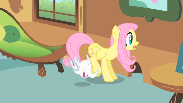 File:Angel crashes into Fluttershy S1E22.png
