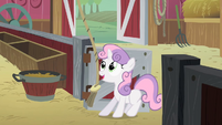 Sweetie Belle ringing the bell S01E18