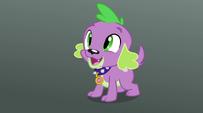 "Spike ""Ready!"" EG2"
