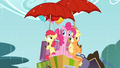 Apple Bloom and Applejack with umbrellas S4E09.png