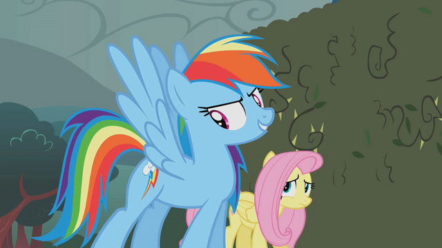 "File:Rainbow Dash ""these babies"" S02E01.png"