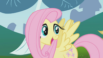 Fluttershy explaining rabbit roundup to Applejack S1E04