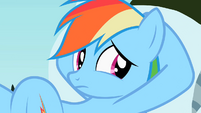 Rainbow Dash looking S2E07