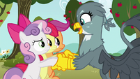 Gabby meets the Cutie Mark Crusaders S6E19