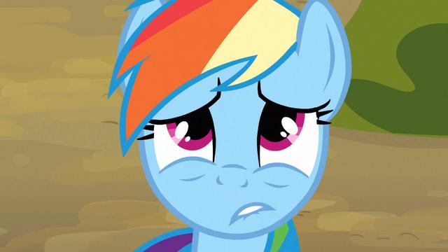 File:Rainbow Dash having regrets S3E09.png