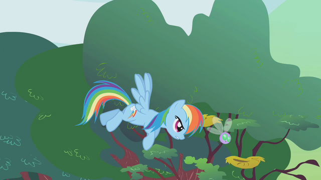 File:Rainbow Dash herds a stray parasprite S1E10.png